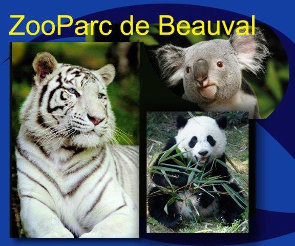 Un aper u des nombreux animaux du zoo de beauval for Annoncesjaunes fr location maison